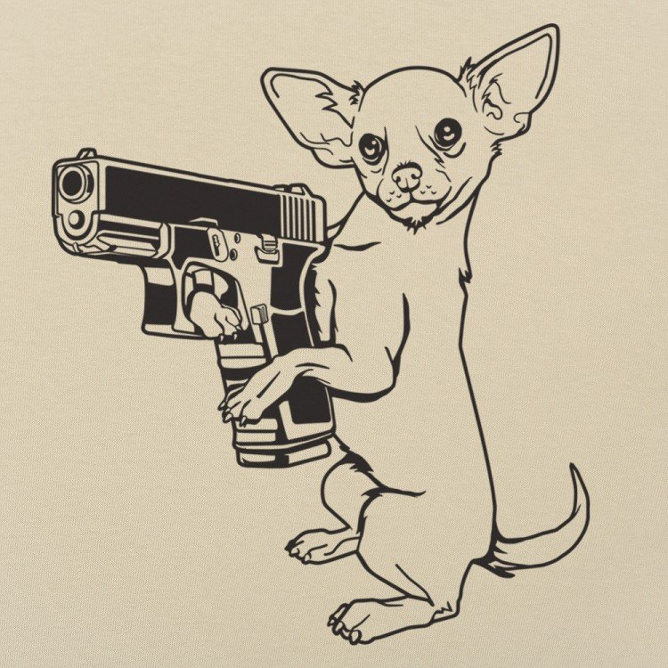 Armed Chihuahua