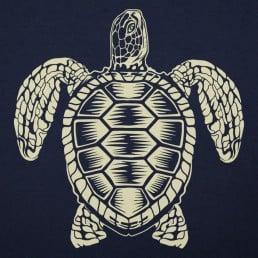 Sea Turtle Spirit