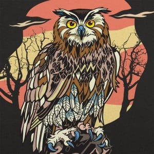 Sundown Owl