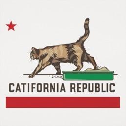 Catifornia Republic Graphic