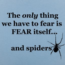 Fear And Spiders