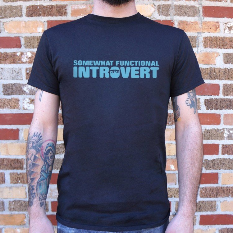 Functional Introvert