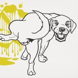 Make Your Mark Dog