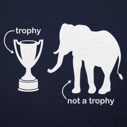 Not A Trophy