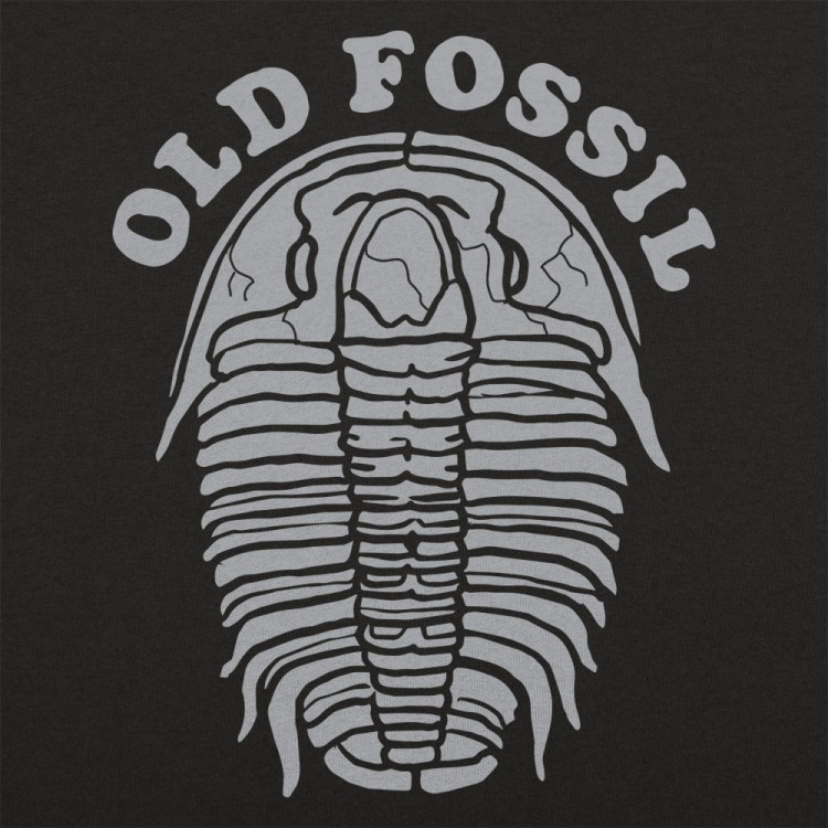 Old Fossil
