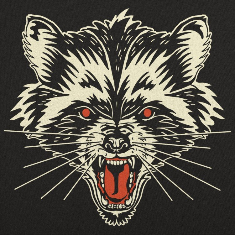 Raccoon Rage