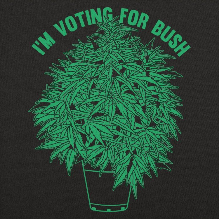 Voting For Bush