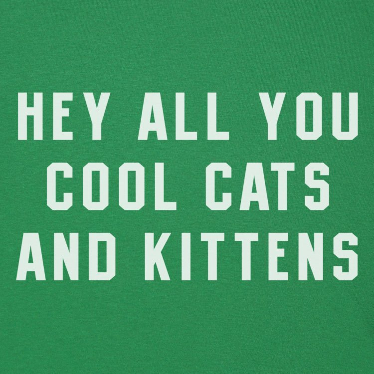 Cool Cats and Kittens