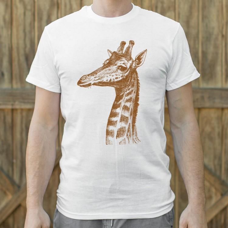 Placid Giraffe