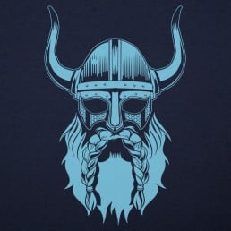 Viking Spirit