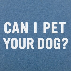 Can I Pet Your Dog