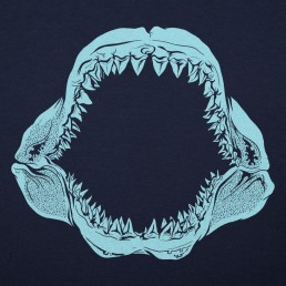 Mouth Of The Megalodon