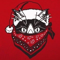 Quarantine Santa Cat