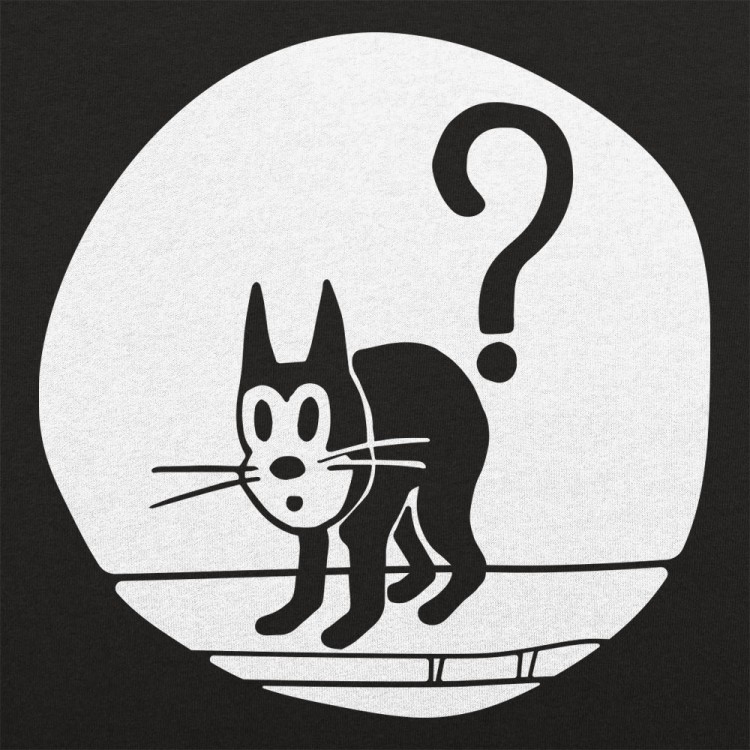 Question Cat
