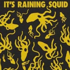 It's Raining Squid